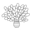 cute cartoon plant in small striped pot long vector image vector image