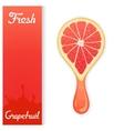 Grapefruit crush juice vector image