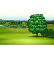 Natural Environment vector image vector image