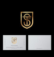 s t letters shield gold lines shield business card vector image vector image