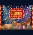 trained animals and acrobat circus show vector image vector image