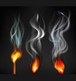 cigarette smoke set vector image