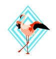 design with flamingo tropical bright abstract vector image vector image