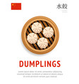 dumplings traditional chinese dish vector image vector image
