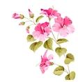 Flower hibiscus vector image vector image