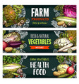 fresh organic vegetables sketch banners vector image vector image