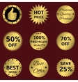 Golden labels on the red vector image