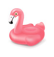 pink inflatable flamingo swim ring isolated vector image vector image