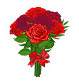 bunch of red rose flowers tied with scarlet ribbon vector image