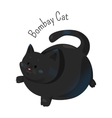 Bombay cat isolated Burmese type vector image