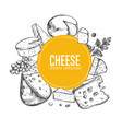 cheese collection 3 vector image vector image