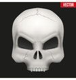 Creative Human skull vector image vector image