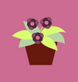 icon in flat design violet in the pot vector image vector image