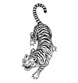 japanese wild tiger asian cat top view fashion vector image