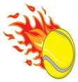 Teniska loptica vatra resize vector image vector image