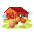 A hen with egg vector