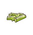 healthy snack - celery cut row stalks vector image