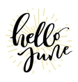 Hello june lettering print vector image