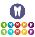 Human tooth set icons vector image vector image