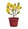money plant with coins vector image