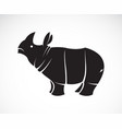 rhinoceros on a white background wild animals vector image vector image