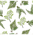 seamless pattern with different fern plants vector image