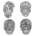 skulls coloring vector image vector image