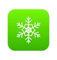 snowflake icon digital green vector image