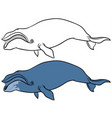bowhead or greenland whale vector image vector image