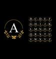 golden leaf wreath logo with alphabet vector image vector image