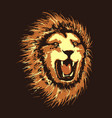 head of angry lion vector image vector image