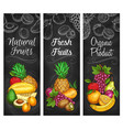 organic garden and tropic fruits harvest sketch vector image vector image