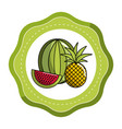 sticker watermelon and pineapple fruit icon vector image vector image