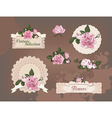 vintage collection beautiful roses vector image vector image