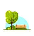 bench in spring or summer city park flat style vector image vector image