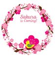 Cherry Blossoms or Sakura flowers Wreath vector image vector image