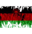 Flag of Malawi vector image vector image