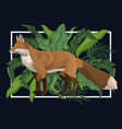 fox in the jungle over black backgroud vector image