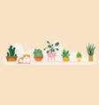 home garden banner floral pots on shelf vector image vector image