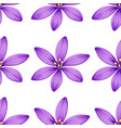 seamless purple flowers isolated on white vector image