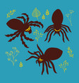 set of broub spiders in retro drawing stile vector image