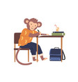 smart monkey in clothes sit at desk while vector image vector image
