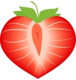 strawberry in form heart vector image vector image