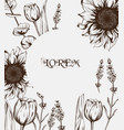summer tulips and sunflowers card line art vector image vector image
