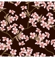 Cherry blossom background Seamless flowers pattern vector image vector image