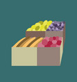 icon in flat design vegetables and fruits vector image