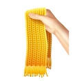 Knitted Scarf In Hand Realistic vector image vector image