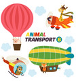 set of isolated air transports with animals vector image vector image