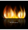 abstract dark fire vector image