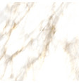 abstract background with detailed marble texture vector image vector image